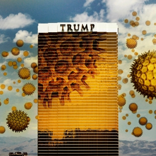 """""""Pollen Attacks!!!"""" by Expose Propose Politicise"""